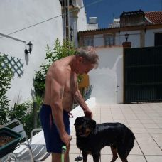 Miguel Santos - Pet Sitting e Pet Walking - Portalegre