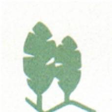 Hosiplante - Projecto, Execução e Manutenção de Espaços Verdes, Lda -  anos