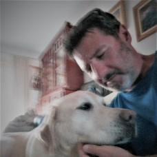 Petsitting Cascais/Oeiras - Serviços ao Domicilio para Animais de Estimação -  anos