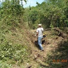 ANTONIO MANUEL - Jardinagem e Relvados - Aveiro