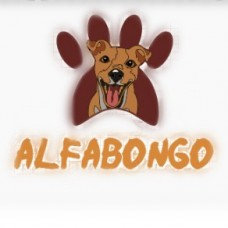 AlfaBONGO - Treino de Cães - Setúbal
