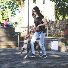 Joana Gonçalves - Cuidados para Animais de Estimação - Santarém