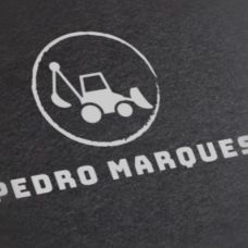 Pedro Marques -  anos