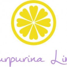 Purpurina Limão - Decoração de Festas e Eventos - Braga