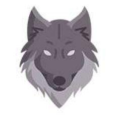 Wolf Design - Edição de Vídeo - Campanhã