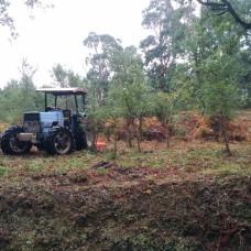 Sebasjardins - Remoção de Arbustos - Algueirão-Mem Martins