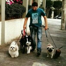Victor Ripar - Dog Walking - Belém
