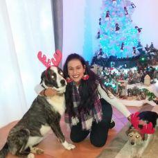 Anabela Oliveira - Hotel para Cães - P??voa de Santa Iria e Forte da Casa