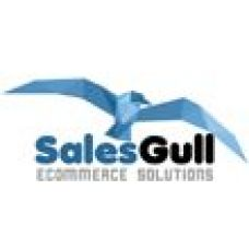 Salesgull, lda - Web Design e Web Development - Setúbal