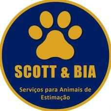 Ana Paula Almeida (Scott & Bia) - Cuidados para Animais de Estimação - Aveiro