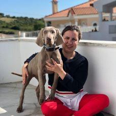 Debora Silva - Treino de Cães - Aulas Privadas - Santo Ant??nio