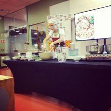 Catarina Couto - Formação Técnica - Beja
