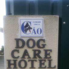Dog's care Hotel - Hotel e Creche para Animais - Ansião