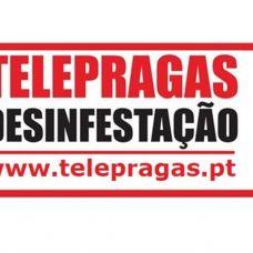 Telepragas, Lda - Empresas de Desinfestação - Loures