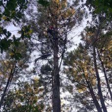 LF.Limpezas Florestais e jardinagem - Ar Condicionado e Ventilação - Braga