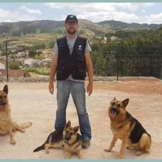 Reino das peripecias caninas - Fixando Portugal