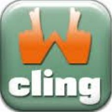 CLINGWIN - Web Design e Web Development - Viana do Castelo