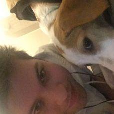 Original Pet Solutions - Hotel para Cães - Rio Tinto