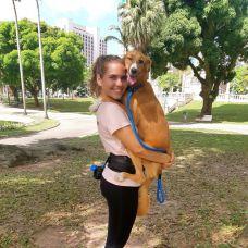 Amiga dos Dogs - Fernanda Coronel - Treino de Cães - Aulas Privadas - Braga (São Vicente)