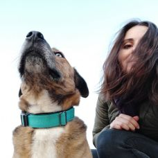 Patrícia Teixeira - Pet Sitting - Valongo