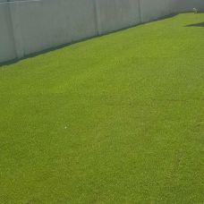 Relva Grass - Paisagismo - Lisboa