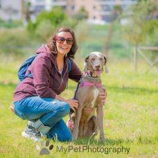 Miss Debbie ~ loja de alimentação, Hotel Familiar, Pet Sitting, Dog Walker, Creche e Pet Táxi - Hotel e Creche para Animais - Santarém