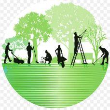 Jpgreen - Jardinagem e Relvados - Viseu
