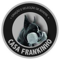 Casa Frankinho - Treino de Cães - Leiria