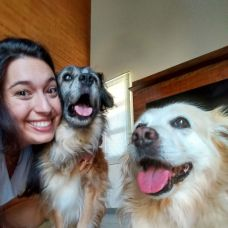 Lis Maldos - Pet Sitting e Pet Walking - Trofa