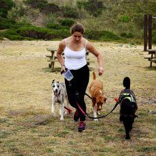 Frederica Caneiro Dip.TC - Treino de Cães - Leiria