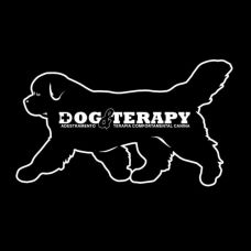 PositiveDog&Terapy - Pet Sitting e Pet Walking - Lisboa