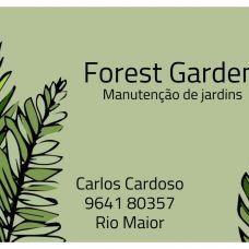 Carlos Cardoso - Gestão de Condomínios - Santarém