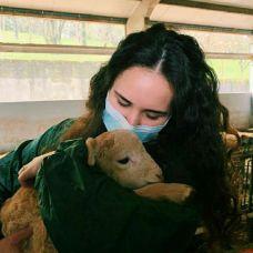 Beatriz Carvalho - Pet Sitting e Pet Walking - Trofa