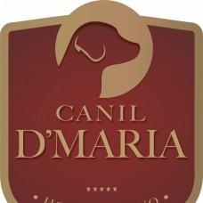 Canil D\' Maria - Cuidados para Animais de Estimação - Aveiro