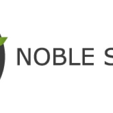Noble Strategy - Web Design e Web Development - Setúbal