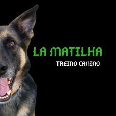 La Matilha- Treino Canino - Treino de Cães - Aulas Privadas - Mina de Água