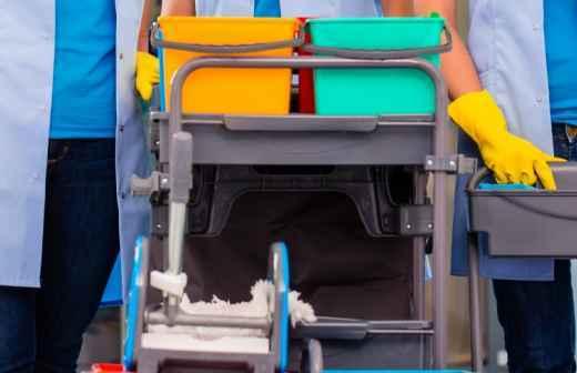 Qual é o preço de Serviços Domésticos? Fixando