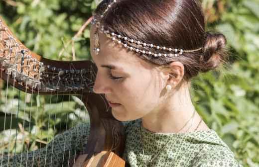 Qual é o preço de Aulas de Harpa na Vidigueira? Fixando