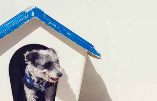 Hotel para Cães - Acampamentos