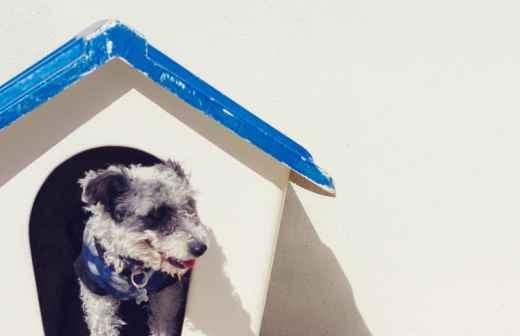 Hotel para Cães - Caminhada Espacial
