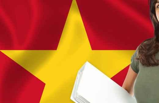 Tradução de Vietnamita - Beja