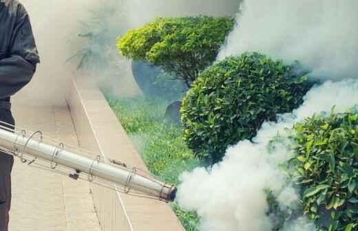 Pest Extermination Companies